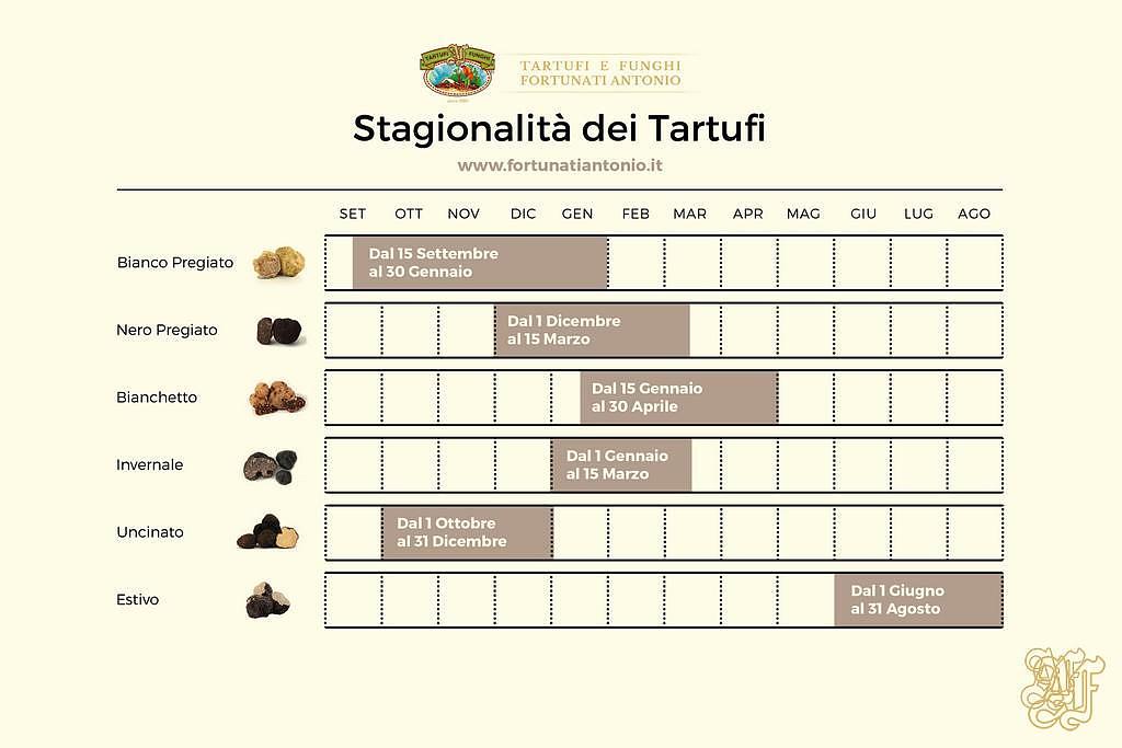 stagionalità tartufi freschi