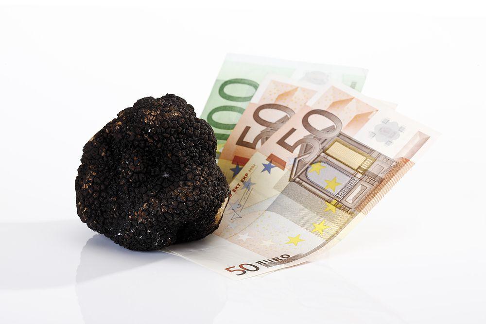 Prezzo del tartufo nero: ecco quanto è giusto pagarlo