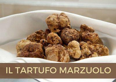 tartufo-marzuolo-fortunati