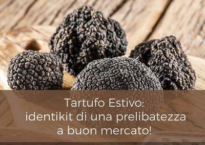 Tartufo Estivo