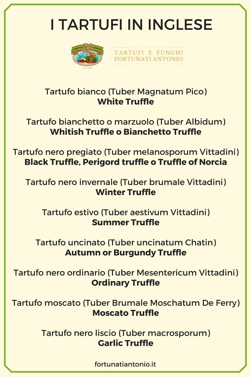 tartufi-in-inglese-traduzione