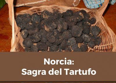 Sagre del tartufo Norcia